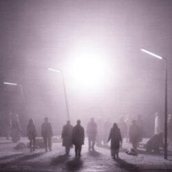 Violetter-Schnee-Monika-Rittershaus-Berlin-2020